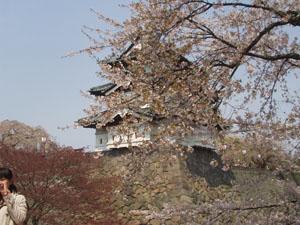 弘前公園_b0058290_15532722.jpg