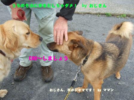 b0087400_23184575.jpg