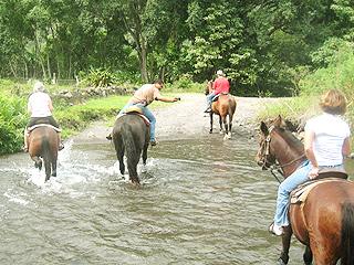 大自然の中での乗馬体験 ハワイ島_b0054054_11181521.jpg