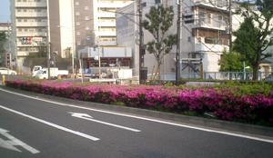 b0013376_9104837.jpg