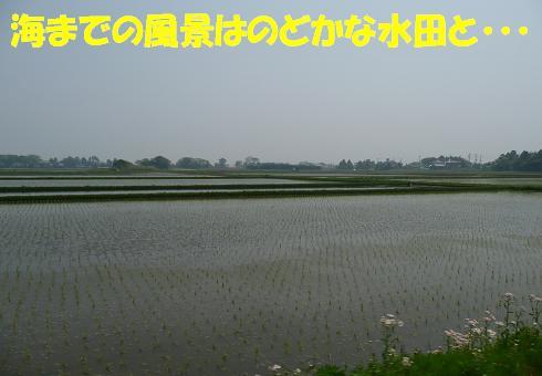 f0121712_1617349.jpg