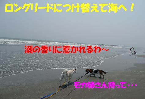 f0121712_16184466.jpg