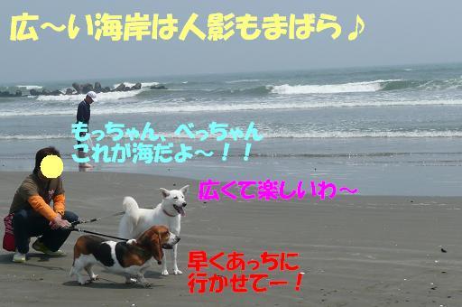 f0121712_1618893.jpg