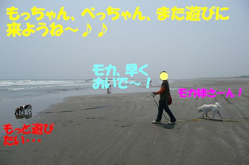 f0121712_16213478.jpg