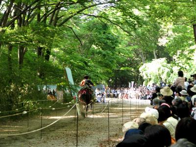葵祭  流鏑馬神事_e0048413_23585484.jpg
