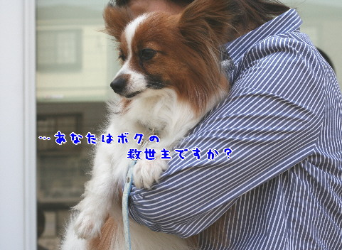 d0013149_1083969.jpg