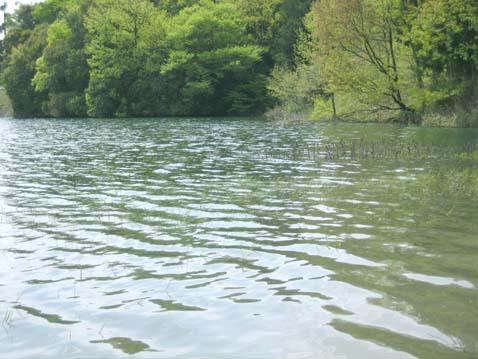 春の水_c0107829_0194077.jpg
