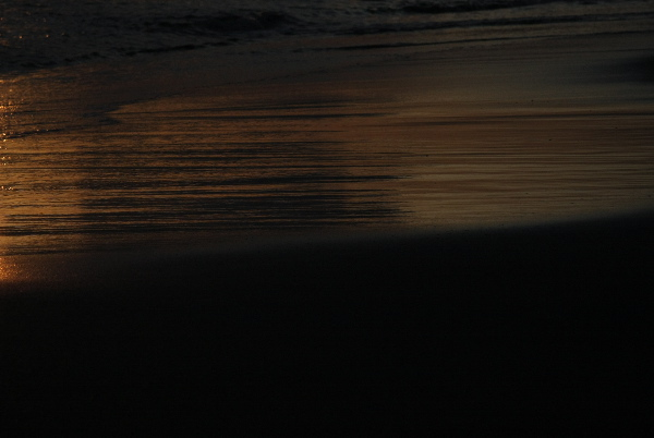 f0156448_0451516.jpg