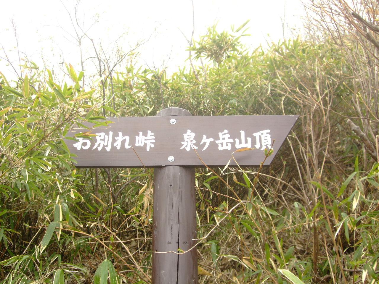 f0100593_1605585.jpg