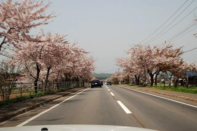 ビーコム北海道~2008函館オフ②~_f0113918_15391632.jpg