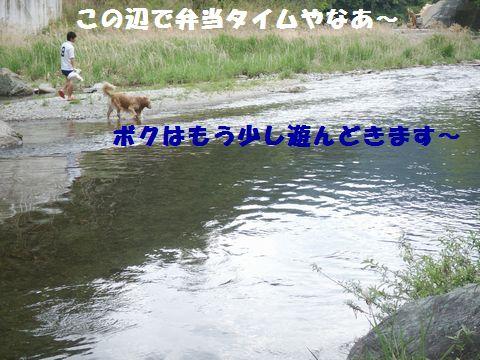 b0127531_8302223.jpg