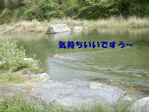 b0127531_835161.jpg