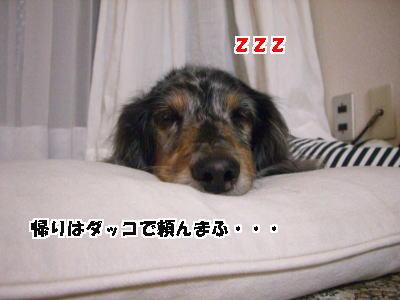 d0020869_11411011.jpg
