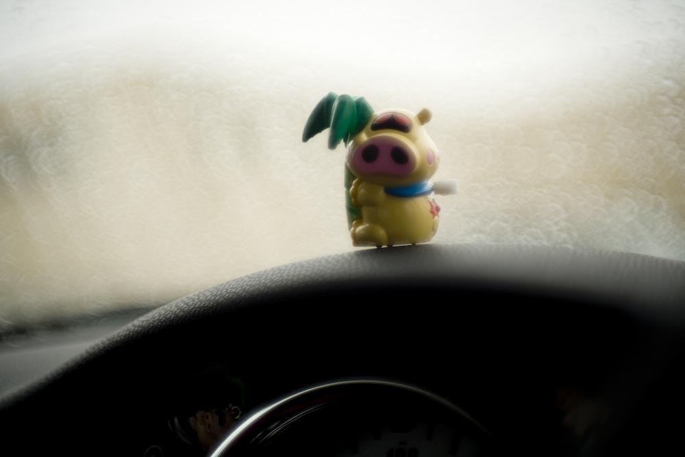 五月雨・・・_c0150383_2171236.jpg