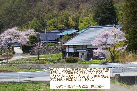 杖突街道の春_f0163491_20454969.jpg