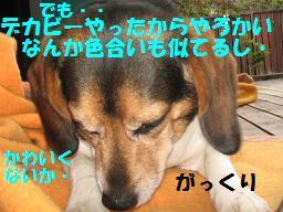 d0104209_21542644.jpg