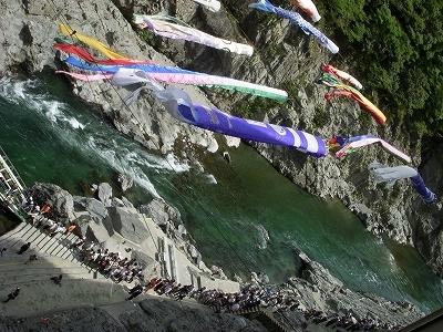 四国、吉野川で遊ぶ_d0116009_1362347.jpg
