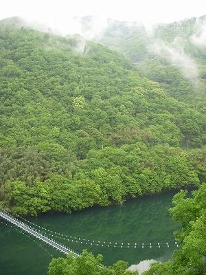 四国、吉野川で遊ぶ_d0116009_1463880.jpg