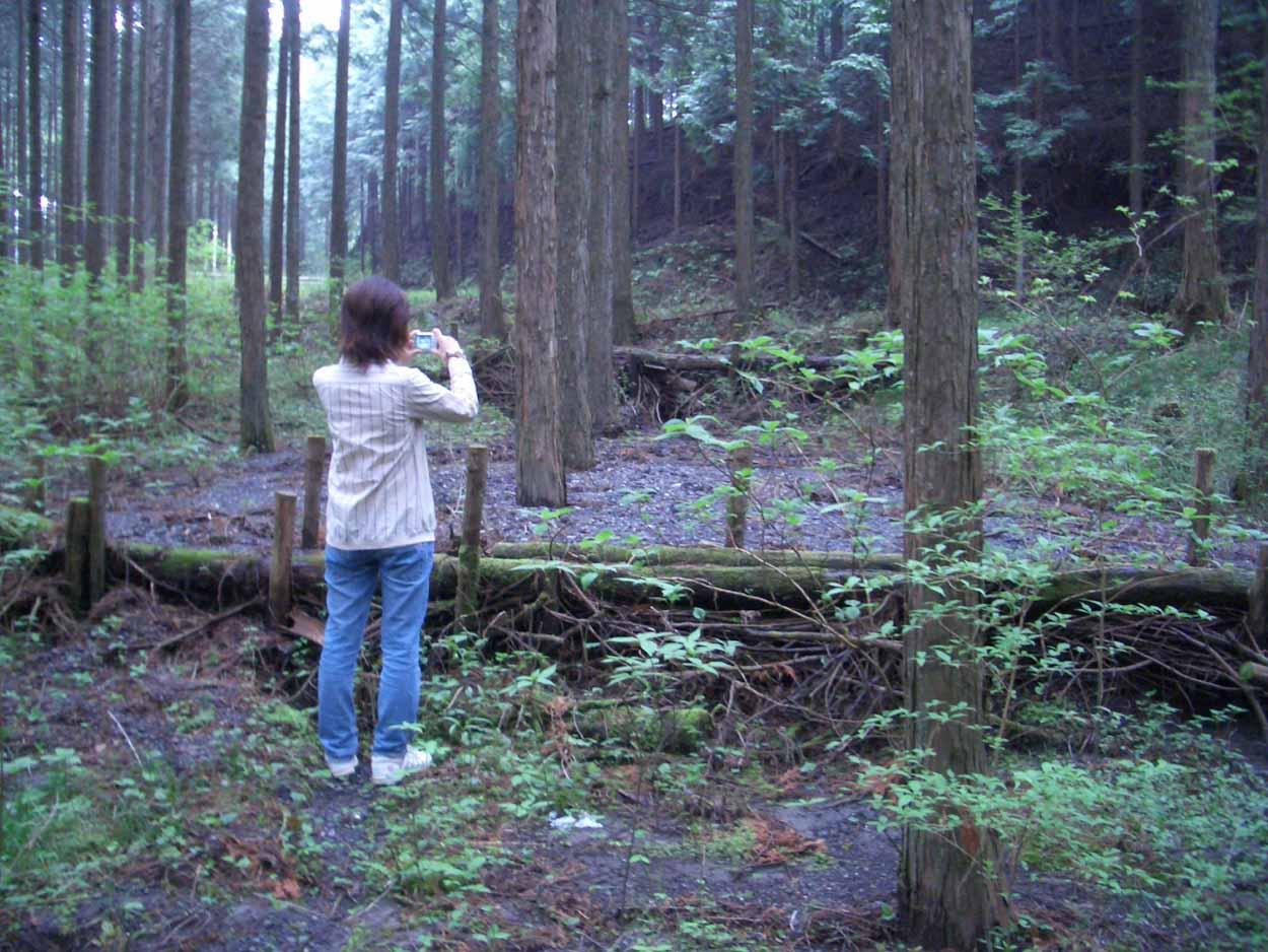娘の卒業制作の運転手で富士山へ_f0141310_21204543.jpg