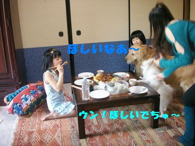 b0127531_20251236.jpg