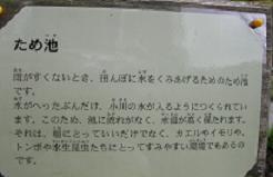 f0139963_14195876.jpg