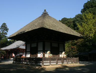 檜尾山  観心寺_a0045381_652485.jpg