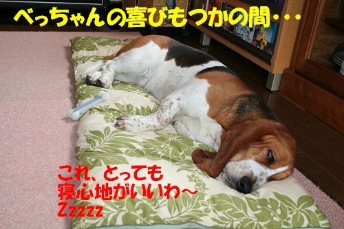 f0121712_23421361.jpg
