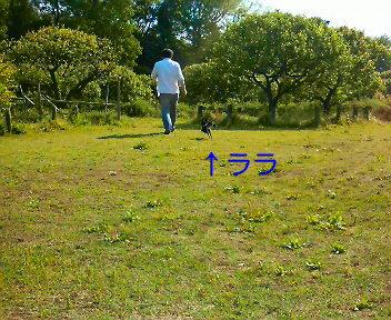 c0121141_164215.jpg