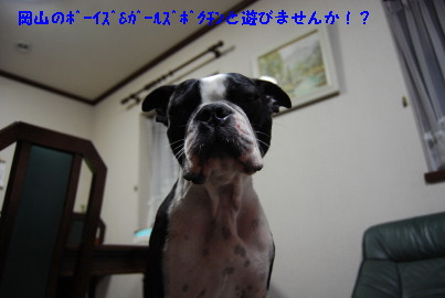 c0092787_19145160.jpg