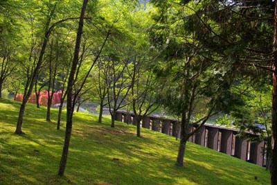 芸術の森公園〜in奈良_f0122107_10125250.jpg
