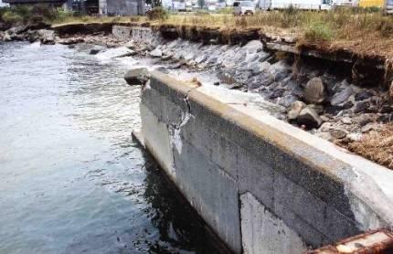 取り戻そう海辺との触れあい東京ガス発電所水際線開放について_f0165519_11245188.jpg