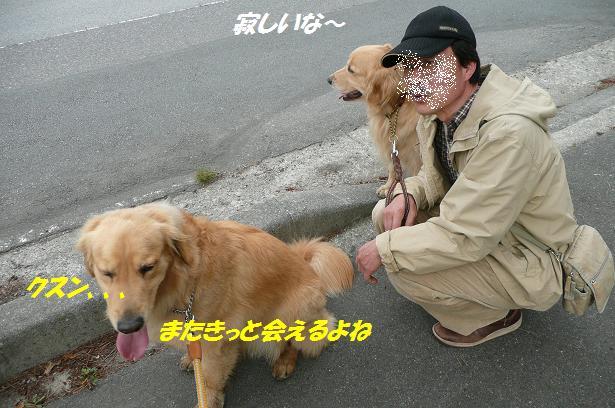 f0114128_14351955.jpg