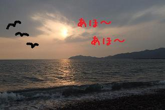 d0074531_1440367.jpg
