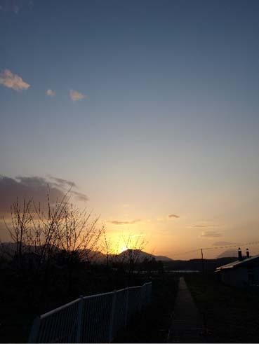 朝の奇跡_a0094336_7405476.jpg