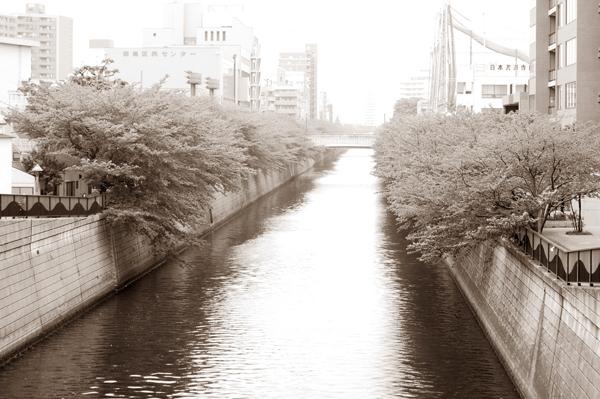 5月のモノクロ撮影会_a0003650_22505024.jpg
