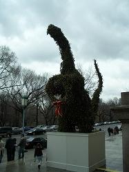 ニューヨークのミュージアム③アメリカ自然史博物館_b0031055_21192914.jpg