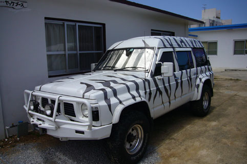 bran-new car._c0153966_232741.jpg