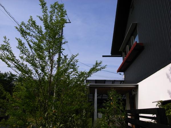 『5月のFさま邸』_b0131012_9393248.jpg