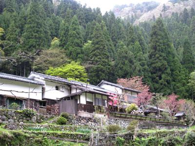 北山雲ヶ畑_e0048413_22332711.jpg
