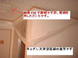 f0031037_2048354.jpg