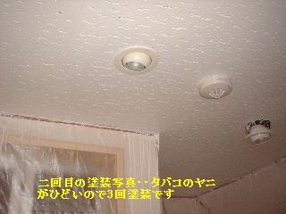f0031037_20494548.jpg