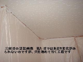 f0031037_2050122.jpg
