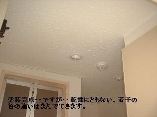 f0031037_20504593.jpg