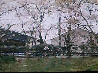 """関西もっといい旅「""""エコ気分""""で駆ける城下町~彦根 自転車の旅~」_f0017409_1435269.jpg"""