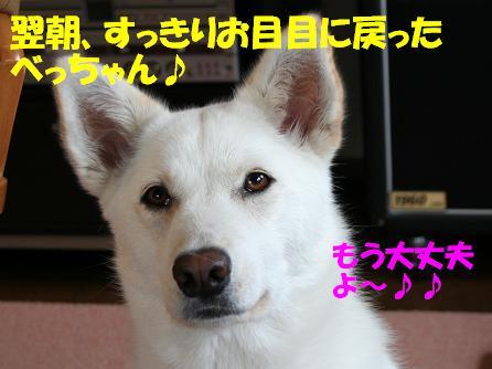 f0121712_16263746.jpg