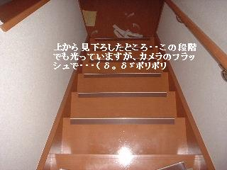 f0031037_22403296.jpg