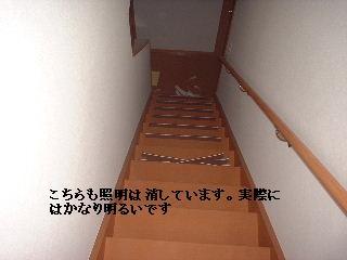 f0031037_22411140.jpg