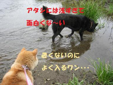 c0049950_20524599.jpg