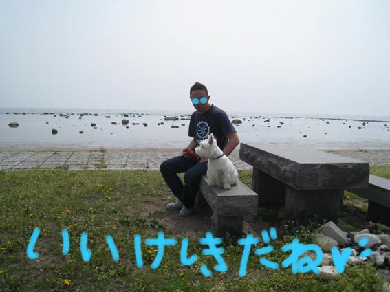 d0134156_14563896.jpg