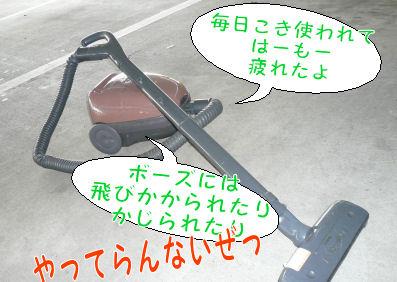 f0112407_10495231.jpg